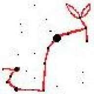RabbitScorpion