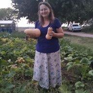 Amish Heart