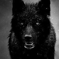 nightwolf1974