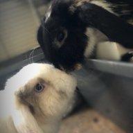 Humphrey&Olive