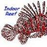 Indoor_Reef