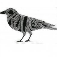 crowcrow