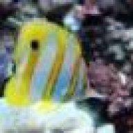ReefKeeper