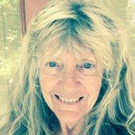 Sally Scheibner